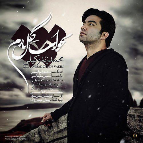 دانلود آهنگ جدید محمد زندوکیلی به نام بخواب گل نازم