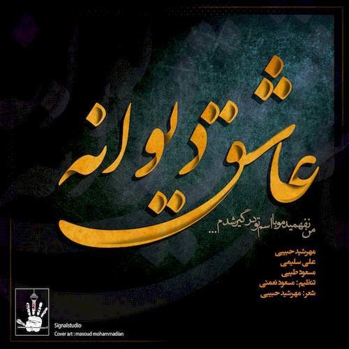 دانلود آهنگ جدید مهرشید حبیبی و علی سلیمی و مسعود طیبی به نام عشق دیوانه