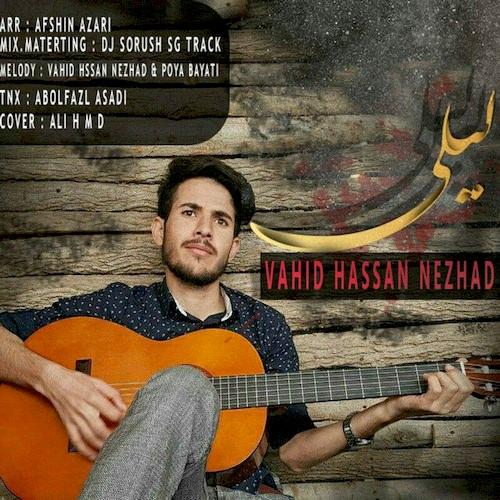 دانلود آهنگ جدید وحید حسن نژاد به نام لیلی