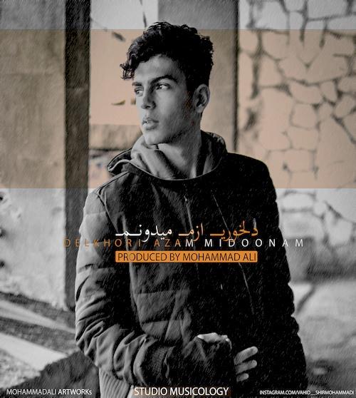 دانلود آهنگ جدید وحید شیر محمدی به نام دلخوری ازم میدونم