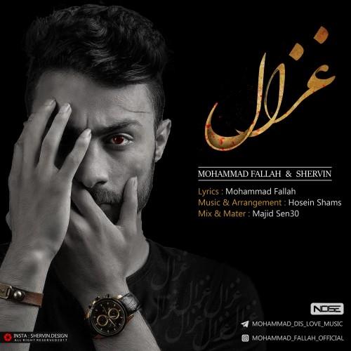 دانلود آهنگ جدید محمد فلاح و شروین به نام غزال