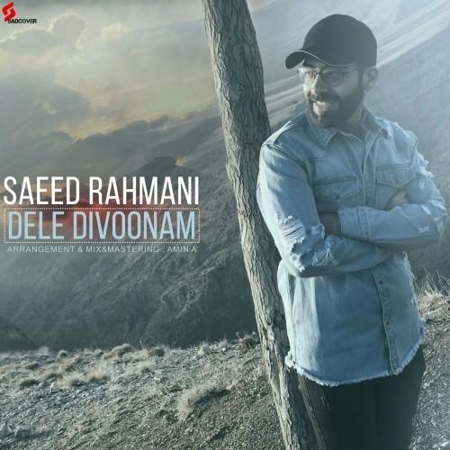 دانلود آهنگ جدید سعید رحمانی به نام دل دیوونم