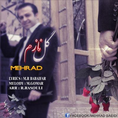 مهراد سعیدی - گل نازم