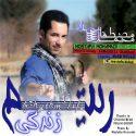 دانلود آهنگ جدید مصطفی محمدی به نام ریتم زندگی