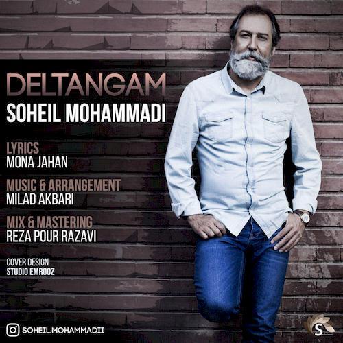 دانلود آهنگ جدید سهیل محمدی به نام دلتنگم