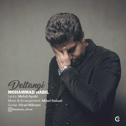 دانلود آهنگ جدید محمد نبیل به نام دلتنگی