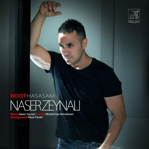 دانلود آهنگ جدید ناصر زینلی به نام روت حساسم