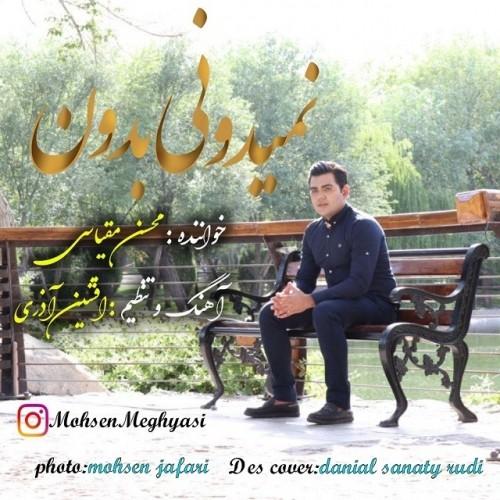 دانلود آهنگ جدید محسن مقیاسی به نام نمیدونی بدون