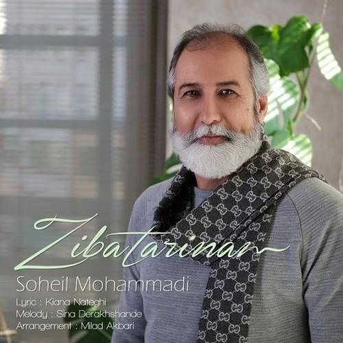 دانلود آهنگ جدید سهیل محمدی به نام زیباترینم