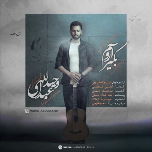 دانلود آهنگ جدید وحید عبداللهی به نام آروم بگیر