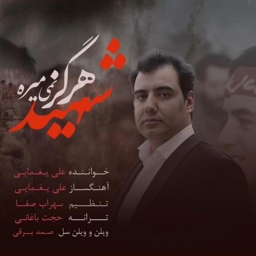دانلود آهنگ جدید علی یغمایی به نام شهید هرگز نمی میره