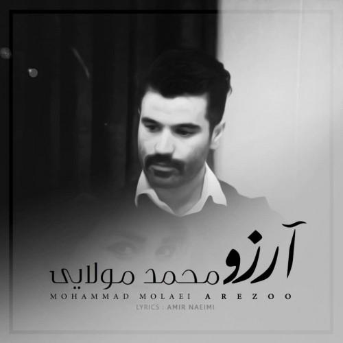دانلود آهنگ جدید محمد مولایی به نام آرزو