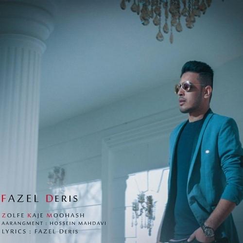 دانلود آهنگ جدید فاضل دریس به نام زلف کج موهاش
