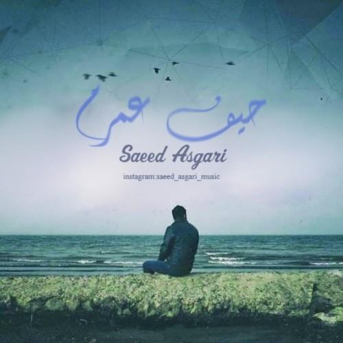 دانلود آهنگ جدید سعید عسگری به نام حیف عمرم