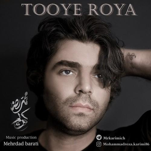 دانلود آهنگ جدید محمدرضا کریمی به نام توی رویا