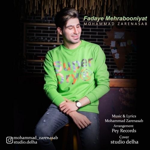 دانلود آهنگ جدید محمد زارع نسب به نام فدای مهربونیات