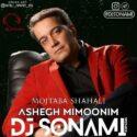 دانلود آهنگ جدید مجتبی شاه علی به نام عاشق میمونیم (ریمیکس)