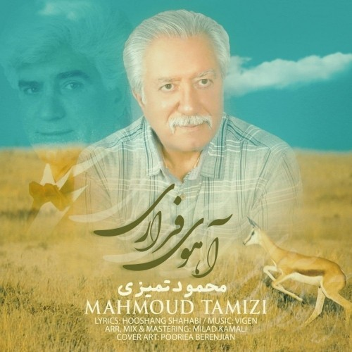 دانلود آهنگ جدید محمود تمیزی به نام آهوی فراری