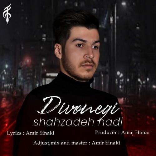 دانلود آهنگ جدید شاهزاده هادی به نام دیوونگی