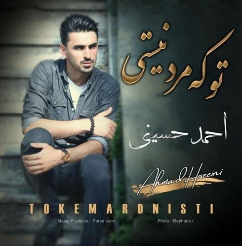 دانلود آهنگ جدید احمد حسینی به نام تو که مرد نیستی