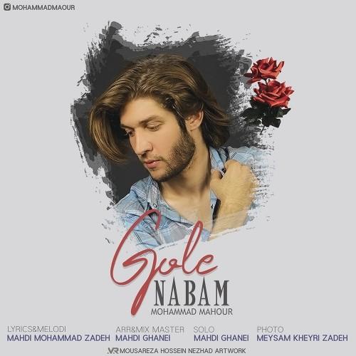 دانلود آهنگ جدید محمد ماهور به نام گل نابم